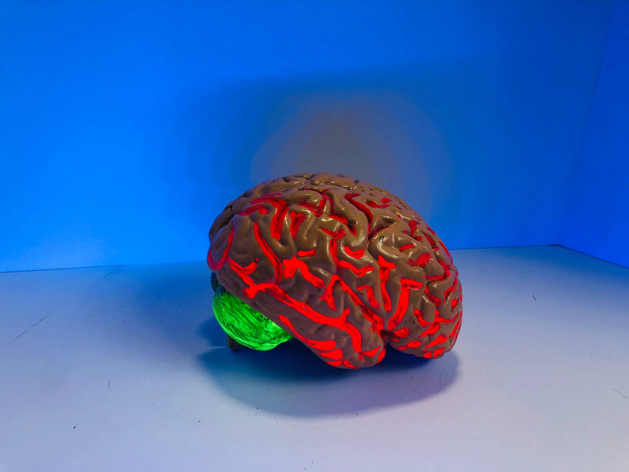 Mózg jako narzędzie terapii biofeedback